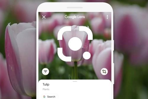 Google Lens: cómo aprovechar al máximo el sistema de reconocimiento visual esta Navidad