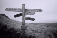 Compañeros de ruta: la experiencia de viajar de diferentes formas... y el regreso