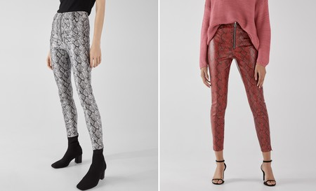 Pantalon Animal Bershka 01