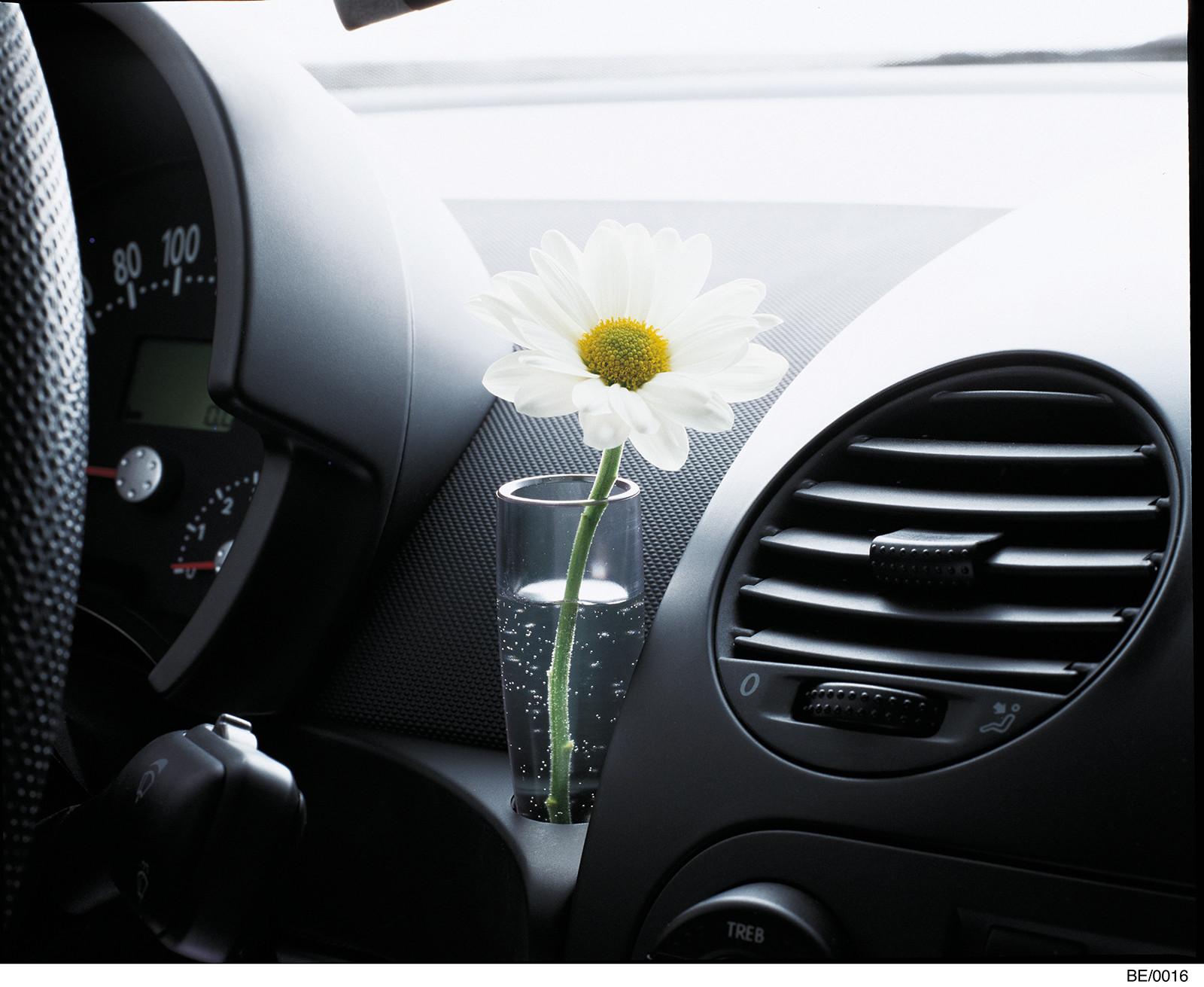 Foto de Despedida Volkswagen Beetle (15/19)