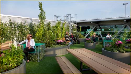 """Cuatro aeropuertos """"verdes"""" que producen verduras y flores en sus techos."""