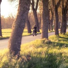 Foto 7 de 68 de la galería bmw-r-5-hommage en Motorpasion Moto