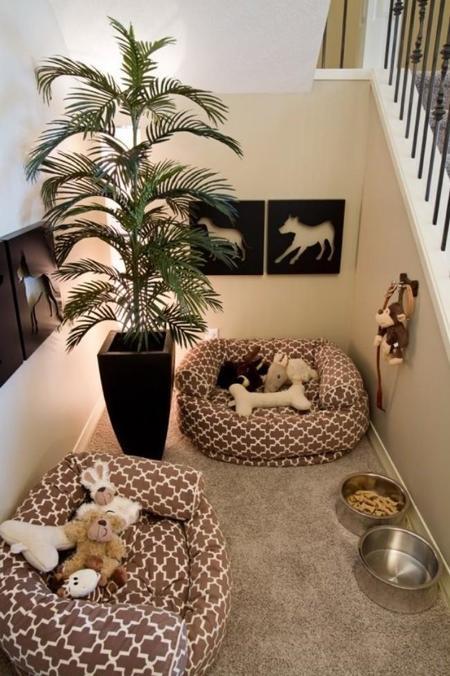 Mascotas: decora su rincón