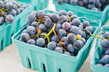 Alimentos cosméticos: para verte y sentirte mejor