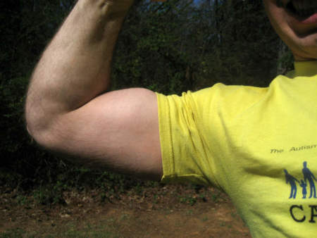 Beneficios de apoyar la espalda al entrenar bíceps