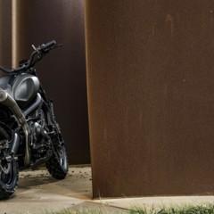 Foto 13 de 19 de la galería yamaha-xsr900-yard-built-monkeebeast en Motorpasion Moto