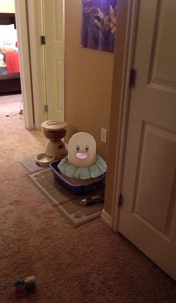 Pokemon Go Digglet