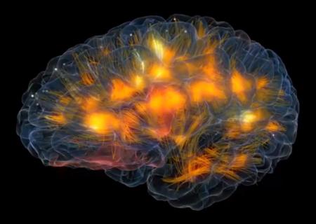 La realidad virtual se mete en el cerebro y prepara el salto a un nuevo Second Life