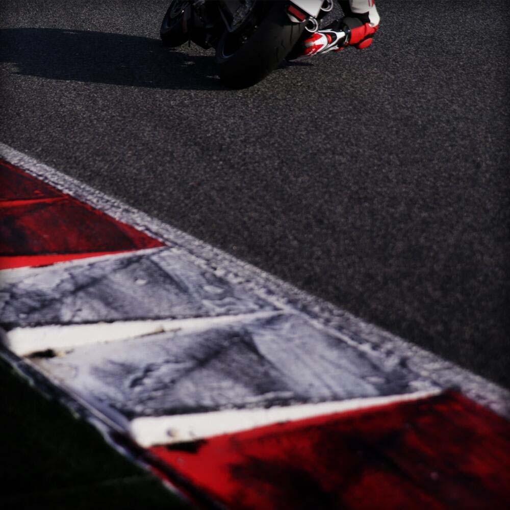 Foto de Ducati Monster (8/8)