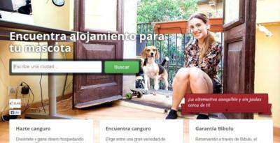 """Bibulu, el """"Airbnb de perros"""" para que nuestra mascota esté en buenas manos"""