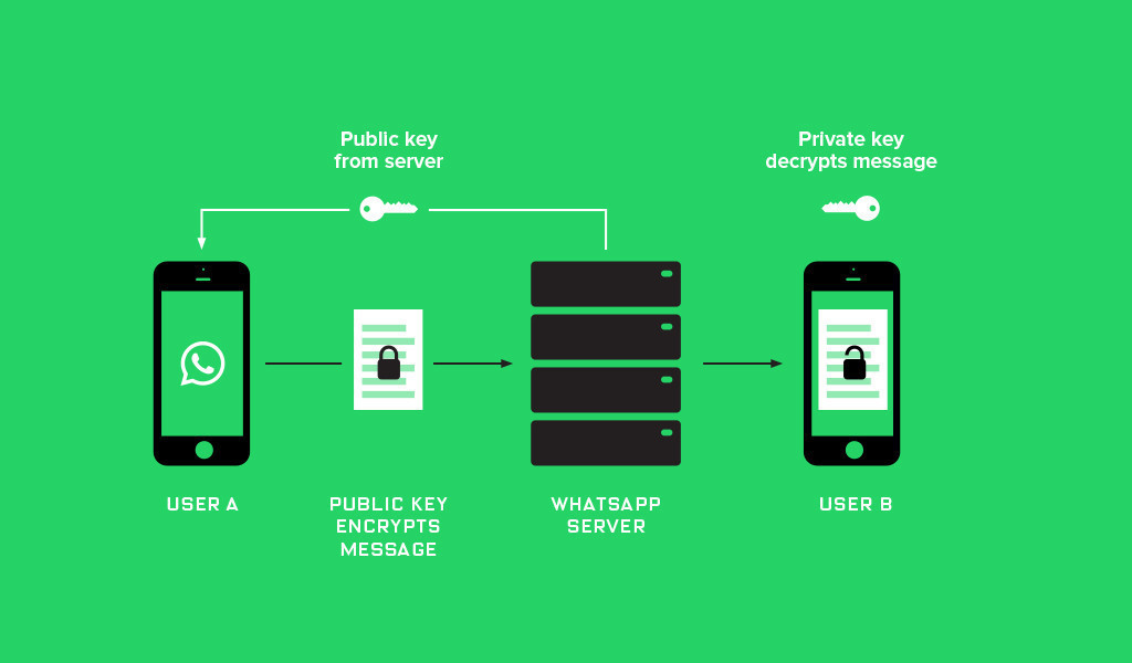 Schema of WhatsApp encryption