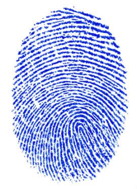 Crea tu propio Método CSI para aplicaciones móviles