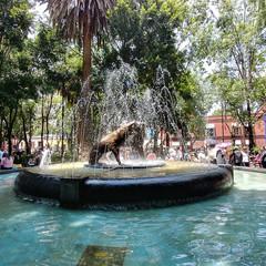 Foto 26 de 36 de la galería fotos-con-el-lg-g6 en Xataka México