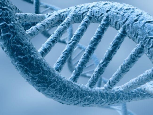 Las huellas de ADN de los libros: descifrando la humanidad en función de lo que escribe y cómo lo escribe (I)