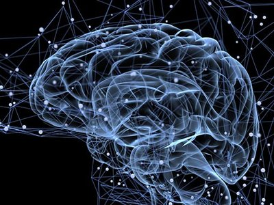 Nuestro cerebro necesita colesterol, no lo demonicemos: composición (I)