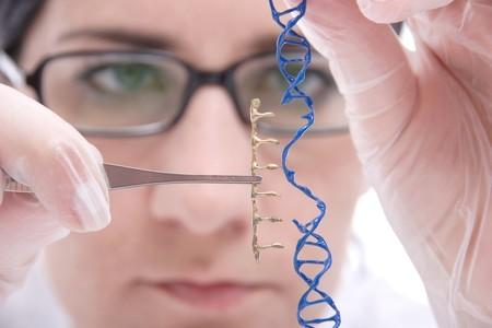 Los riesgos de una popular técnica de ingeniería genética en humanos anticipan uno de los grandes debates del futuro