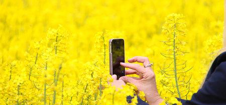 Instagram Stories: Cómo sacarle partido como fotógrafos
