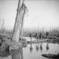 La sanguinaria batalla del Somme, una de las más terribles de la historia, en 26 imágenes