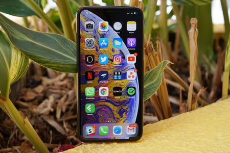 Xs Max Review 11