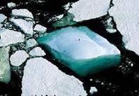 Cambio Climático: Compromiso de la Organización Mundial del turismo