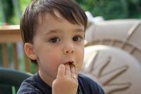 Los nutrientes en la alimentación infantil: hidratos de carbono, proteínas, vitaminas y minerales
