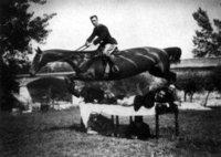 """Los """"caballos largos"""" no existieron"""