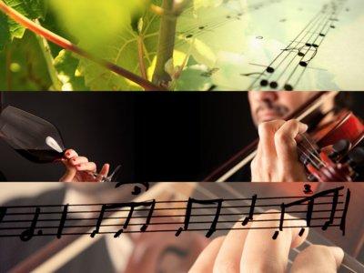 Musivinarte, un maridaje musical que pone la melodía a tu vino