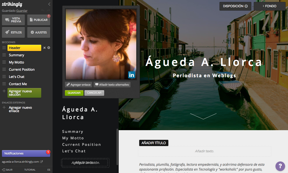 WordPress y creación de blogs - Magazine cover
