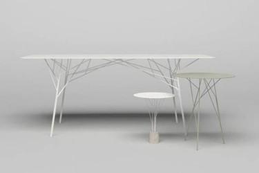 Mesa arbusto de Zhili Liu