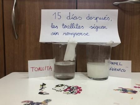 Las toallitas no se disuelven en el váter, y una niña de 4 años lo demuestra con este experimento