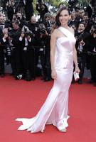 Hilary Swank y Adriana Lima, duelo de looks sobre la alfombra roja de Cannes