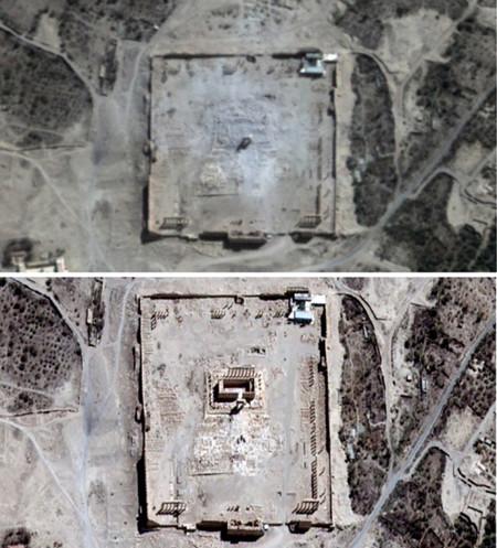 Palmyra 1 3428895b
