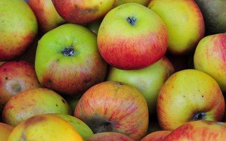 Comprar frutas y verduras de temporada puede ahorrarnos mucho dinero al cabo del año