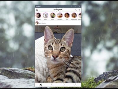 Instagram para Windows 10 ya te permite subir fotos usando la webcam
