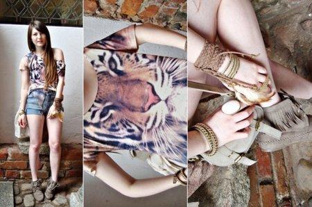 Magdalena tigre