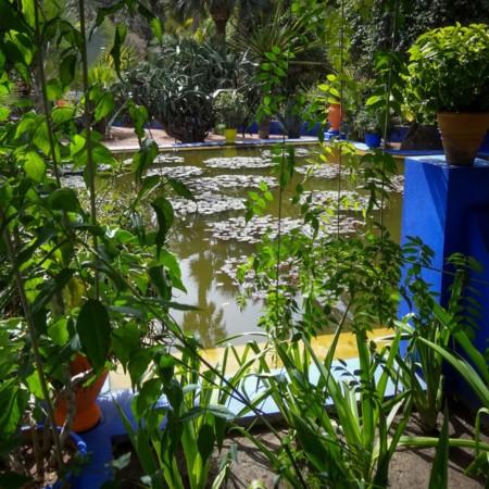 Jardín Majorelle (Marruecos)
