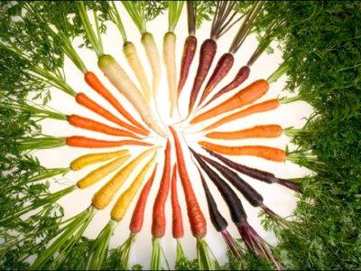 Cómo hemos cambiado: un viaje visual por la evolución de las frutas que nos rodean