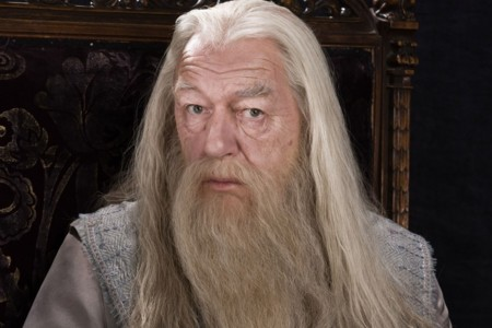 Dumbledore Gandalf 0dd1b538cf398464d741fed6a6b29699 Large 1311147