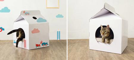 Milk box para gatos