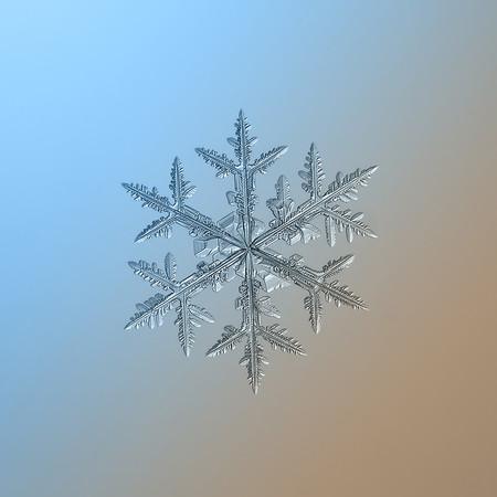 Alexey Kljatov Snowflakes 6