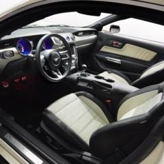 Foto 23 de 24 de la galería 2015-ford-mustang-50-year-limited-edition en Motorpasión