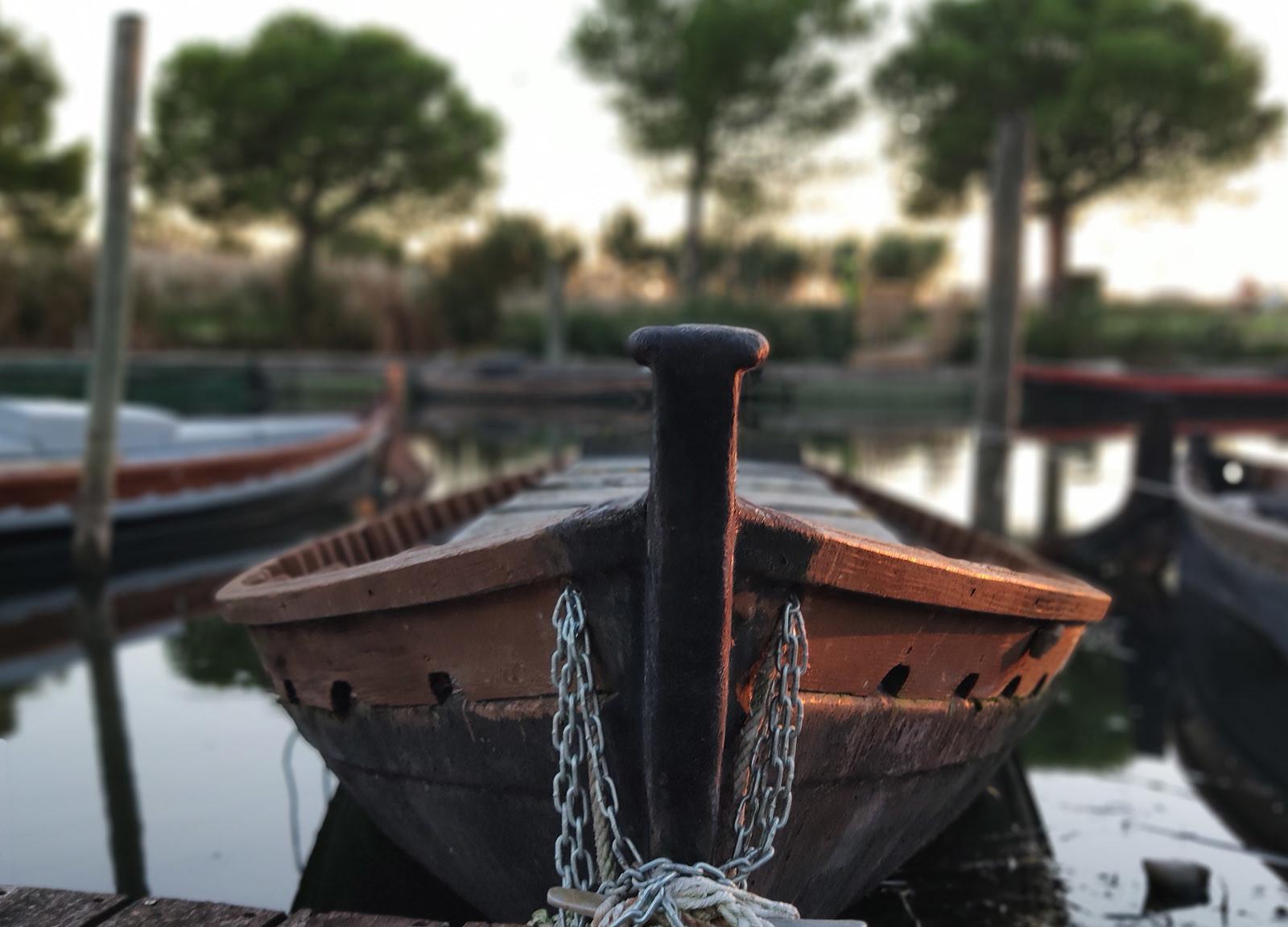 Foto de Xiaomi Mi 8 Pro, modo retrato (5/7)