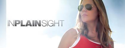 Un primer vistazo a In Plain Sight