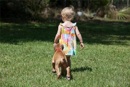 'Quien tiene un perro, tiene un amigo': no lo abandones