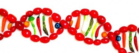 [Vídeo] Desarrollan cómo aumentar la longevidad de las plantas