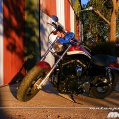 Foto 64 de 65 de la galería harley-davidson-xr-1200ca-custom-limited en Motorpasion Moto