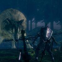 Cómo vencer al pobre Sif, el Gran lobo gris de Dark Souls Remastered