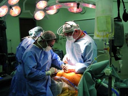"""""""El primer trasplante humano de cabeza se realizará en los próximos diez meses"""""""