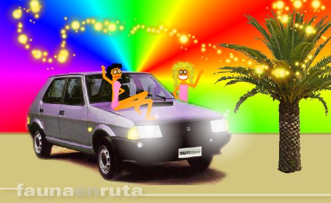 fauna en ruta: luces y conducción