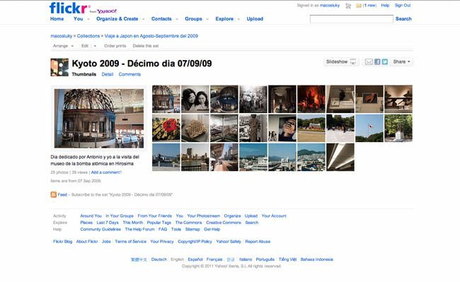 googlevsflickr2.jpg